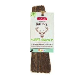 zolux Corna di cervo da cucciolo, circa 15 cm, per cuccioli. ZO-482315 Nourriture