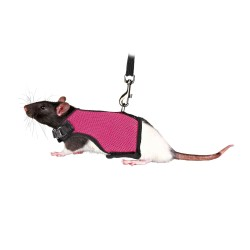 Trixie TR-61511 Soft harness with leash 1.2 m for rats Collars, leashes, harnesses