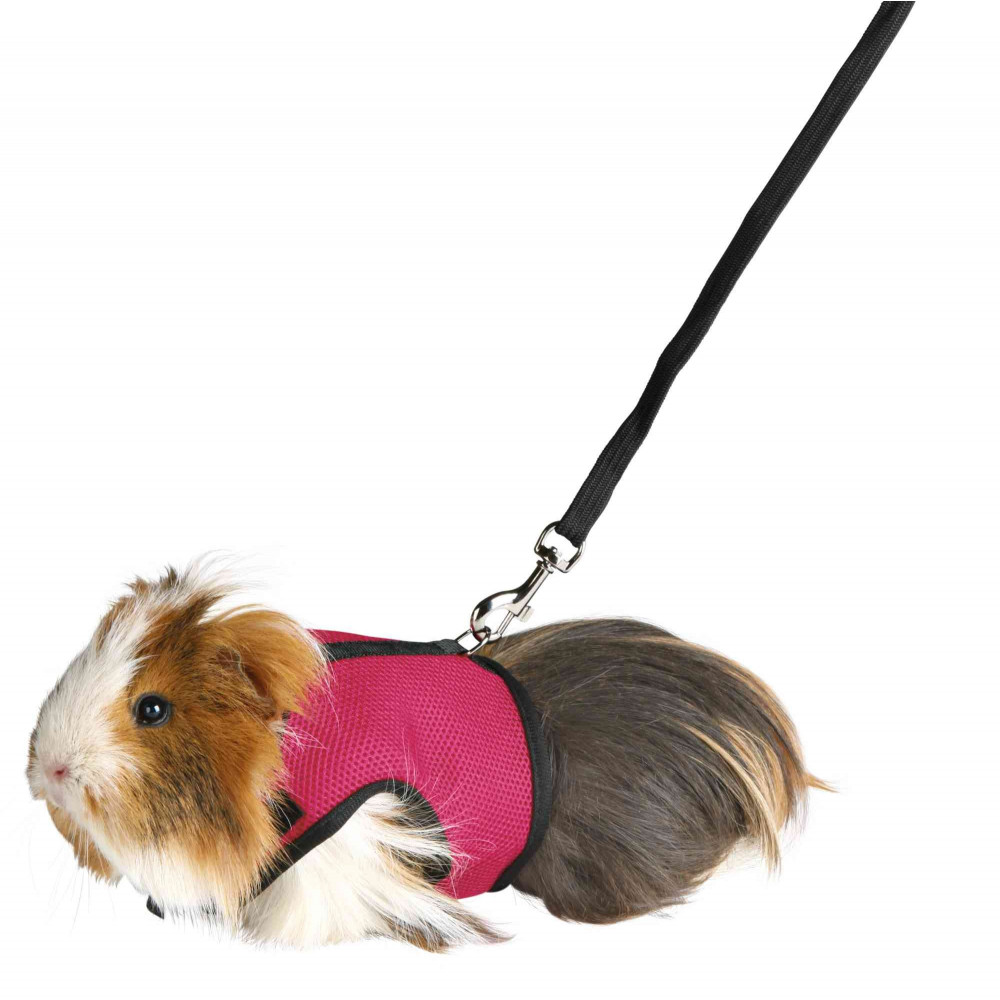 Trixie TR-61512 Soft harness with leash 1.2 m for guinea pigs Collars, leashes, harnesses