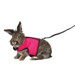 TR-61514 Trixie Suave arnés con correa de 1,2 m para conejos grandes - color aleatorio. Collares, correas, arneses