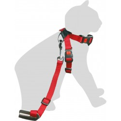 Flamingo Pet Products Safety Harness + leash for Red Cat 15 mm collier laisse cage