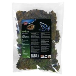 Mousse pour terrarium 200 g Décoration et autre  Trixie TR-76155