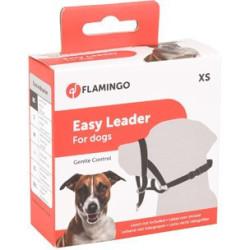 Harnais de dressage noir XS - chien Collier et laisse Flamingo FL-502592
