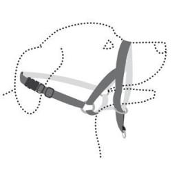 Flamingo Harnais de dressage de tête museliere- noir XS - pour chien FL-502592 harnais chien