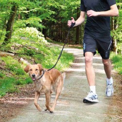 Laisse jogging 0.90 -1.30 m Collier et laisse Trixie TR-12764