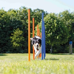 Slalom Agility chien ø 3 × 115 cm Agility chien Trixie TR-3206