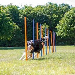 Slalom Agility chien ø 3 × 115 cm Jeux Trixie TR-3206
