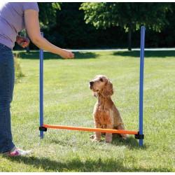TR-3207 Trixie Obstacle Agility pour chien 123 × 115 cm, ø 3 cm Perro de agilidad