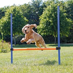 Obstacle Agility pour chien 123 × 115 cm, ø 3 cm Jeux Trixie TR-3207