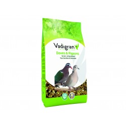 Vadigran Samen für BIRDS Schildkrötentauben und Tauben 1Kg VA-471 Essen und Trinken