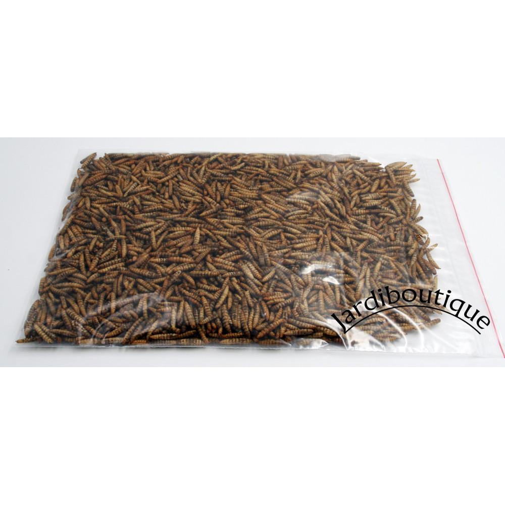 Larves entières soufflés d'hermetia illucens 50 gr.