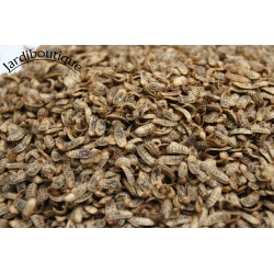Jardiboutique 400 gr Larves entières déshydratées d'insecte (mouche soldat) complément alimentaire animaux . ENT-VR-DESHY-400...
