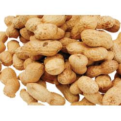 Vadigran Graines arachides sachet de 1.300 Kg. pour oiseaux. Nourriture graine