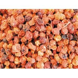 Graines pour OISEAUX baie de sorbier 2.5Kg Nourriture Vadigran VA-261050