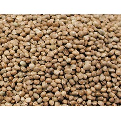 Vadigran graine de chanvre - graines pour OISEAUX  0.8Kg Nourriture graine