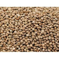Vadigran Graines pour OISEAUX graine de chanvre 0.8Kg VA-210010 Nourriture