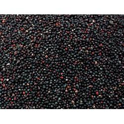 Graines pour OISEAUX colza 1Kg Nourriture Vadigran VA-208010