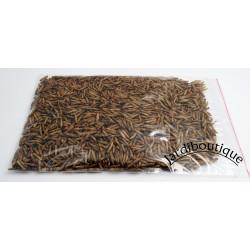 Jardiboutique Nourriture pour animaux a basse d'insecte Soufflées. 50 grammes nourriture a base Insecte