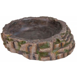 Basin 35x9x34 cm for reptile Decoration and other Trixie TR-76209
