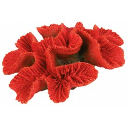 CORAIL BUTTON 16 CM DECORATION FISH Decoration and other Trixie TR-8839