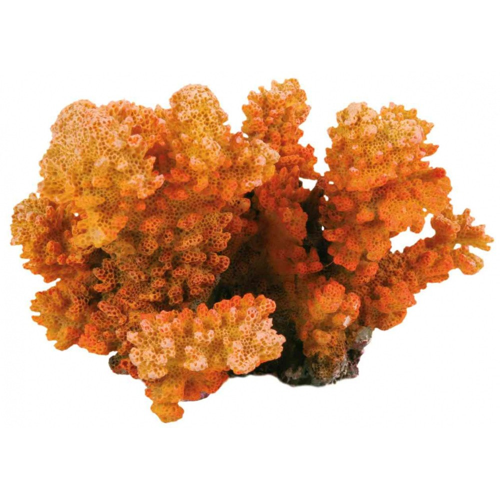 CORAIL BRANCH 12 CM DECORATION FISH Decoration and other Trixie TR-8838