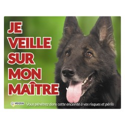 Vadigran panneau photo chien VA-12507 Panel-Panel