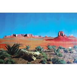 Trixie Terrarium Hintergrund 60 × 150 cm - Steppe und Savanne TR-76320 Dekoration und Sonstiges