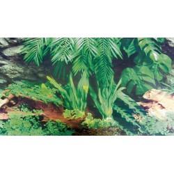 Fond décor de terrarium