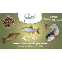 Bait for whole blown larvae fishing. maggot - 50 grams Peaches and novealand bait ENT-50-PE