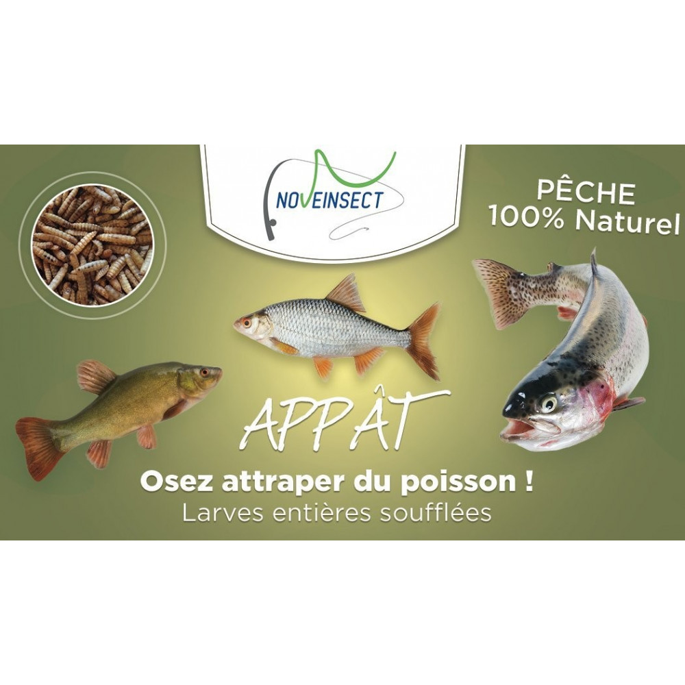 novealand ENT-50-PE Bait for whole blown larvae fishing. maggot - 50 grams Fisheries and bait