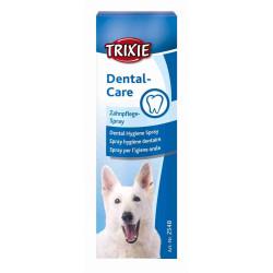 Spray hygiène dentaire
